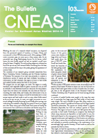 The Bulletin CNEAS vol.3